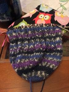 tracey socks